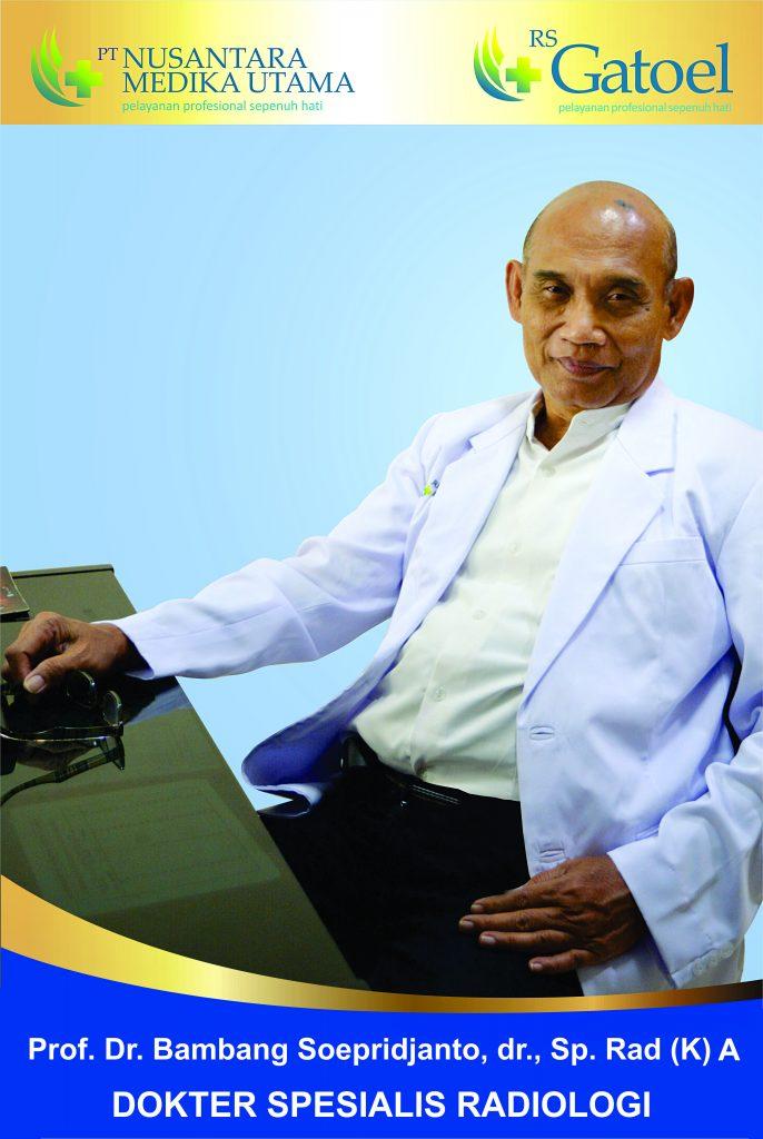 Prof. Dr. Bambang Soeprijanto, dr., Sp